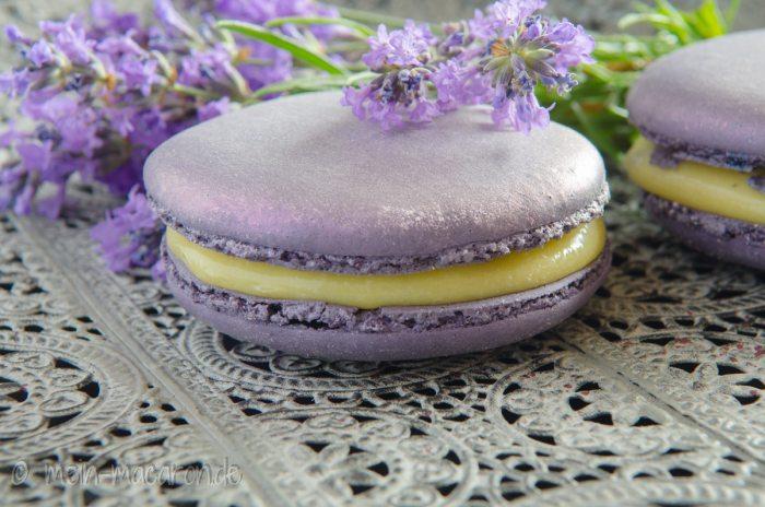 lavendelsommer auf planet macarons macarons rezepte zum selber backen. Black Bedroom Furniture Sets. Home Design Ideas