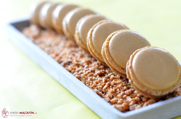 macarons mit nougat ganache und haselnusskrokant macarons rezepte zum selber backen. Black Bedroom Furniture Sets. Home Design Ideas